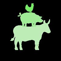 Stier Rind Kuh Schwein Schweine Henne Huhn Hühner