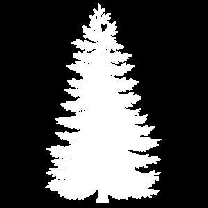 Eine Tanne für Weihnachten