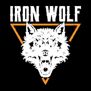 Wolf Tier Rudel Hund jagen einsam Vollmond