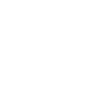 Life is Better with an Alpaca