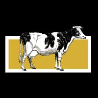 Kuh Kühe Vieh Bauer Bauernhof Landwirt Geschenk