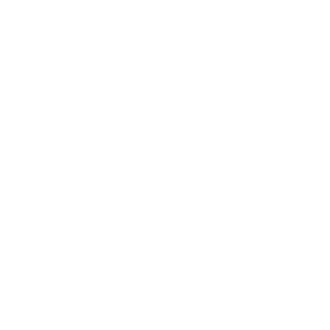 Tanne im Wald