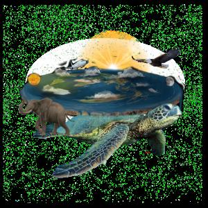Wird die Erde von einer Schildkröte getragen ?