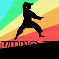 Kung fu Kampfsport Tai Chi China Geschenk MMA