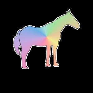 Pferde Reiten Bunt Pony Farbig Geschenk Shirt