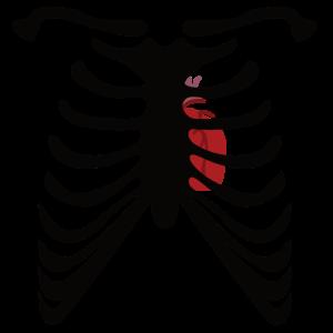 Halloween Skelett - Brustkorb mit Herz