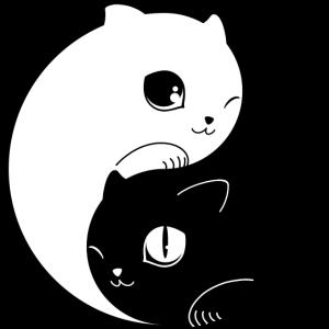 Katze YinYang