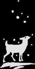 Motif Renne dans la neige
