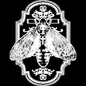 Motte Falter Insekt Gothic