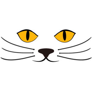 Süßes Katzengesicht
