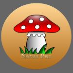 Natur Pur Pilz