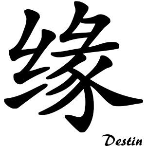 signe chinois destin