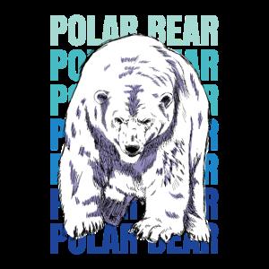 Eisbär Polar Nordpol