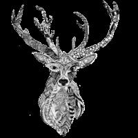 Hirsch - Spirit der Herzmenschen