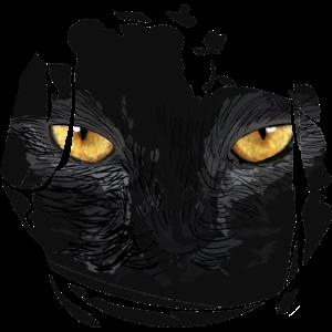 Katzenaugen im gerissenen Shirt, Katzenmama, Katze