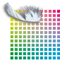 colour_and_feather_4