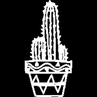 Kaktus Pflanze Groß Geschenk Idee