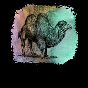 Kamel Camel Dromedar Wüste camel T Shirt