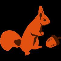 Eichhörnchen mit Nuss, Eichel