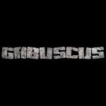 1032197_11694171_gabuscus_rock_stone_tex