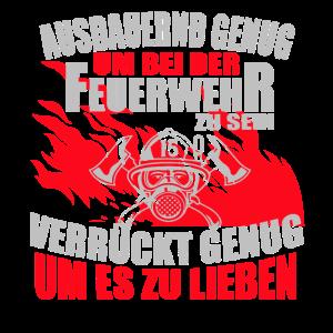 Stolzer Feuerwehrman oder Feuerwehrfrau Freiwillig