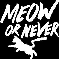 Meow oder nie