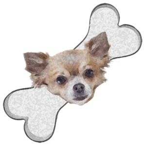 Chihuahua Bones2