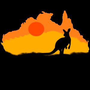 Kangoroo Australien Tiere Tier Wildnis