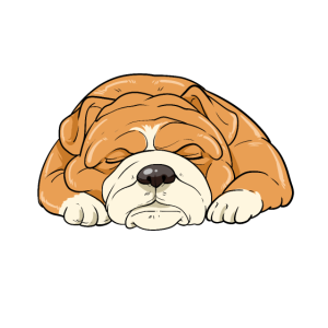 Schlafende Bulldogge Hund Faul Chillen Ruhe Pause