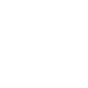Bachelor of Science BSc