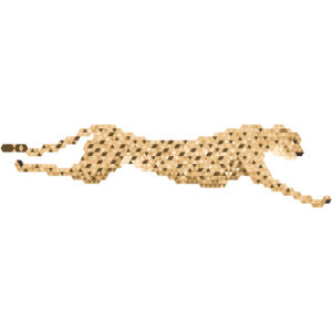 Gepard - Standalone
