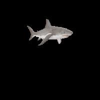Haie machen mich glücklich Shark Lovers