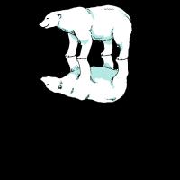 Eisbär Bipolar Bär Glücklich Unglücklich Arktis