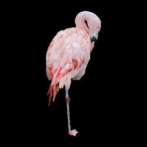 Verwaschener Flamingo