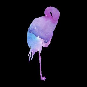 Galaxy Flamingo