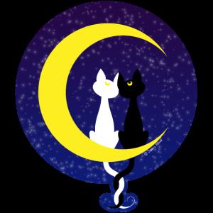 Katzen verliebt auf dem Mond