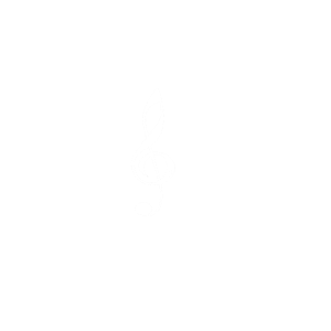 Musik in meiner Seele