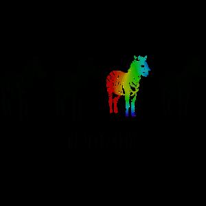 Zebra Regenbogen be different