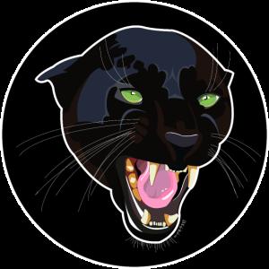 Schwarzer Katzenkopf
