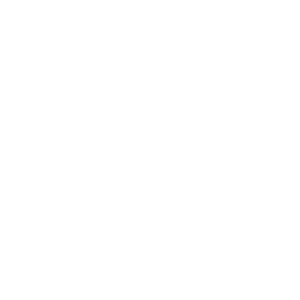 Pferd im Wind in Weiß