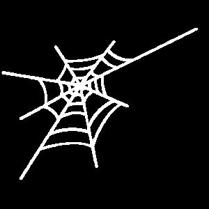 Halloween Spinnennetz Fledermaus