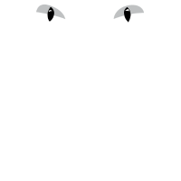 Essen. Schlaf. Kriegerkatzen. Wiederhole Lustig