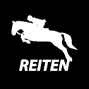 Reiten Pferd Pferde