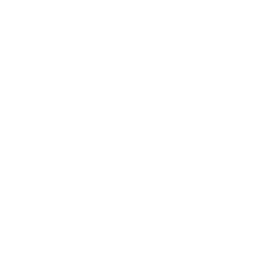 Quark Physik