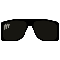 Sonnenbrille 1604 p