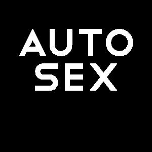 Autosex Sex im Auto