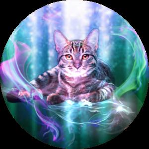 Katze Fantasy