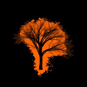 Baum branche Orange und Schwarz Umriss