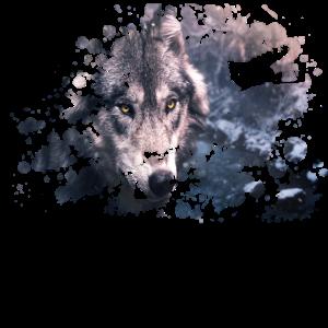 Wolf Farb Splash