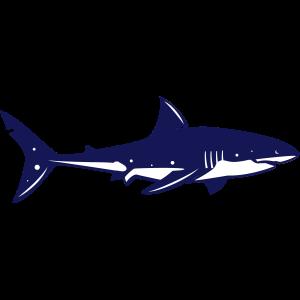 Hai Logo   Haifisch Signet   Weißer Hai